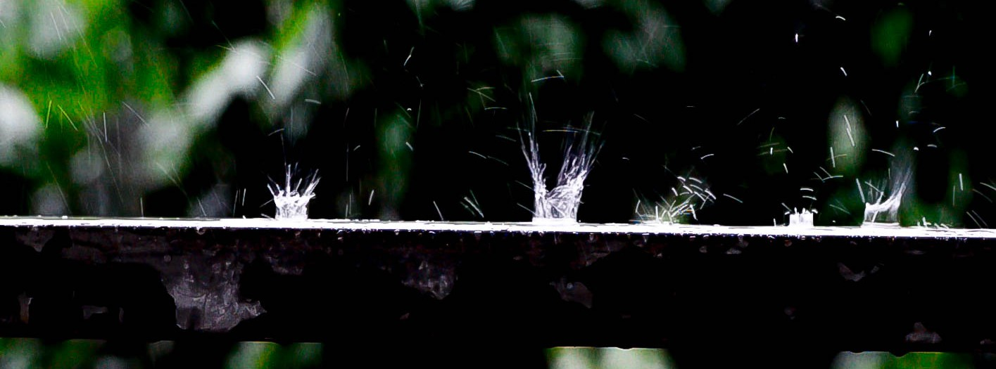 Monsoon Rain Drops