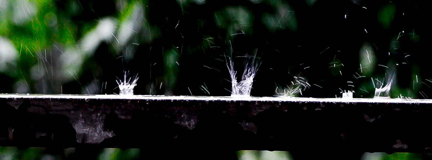 Monsoon Rain Drops